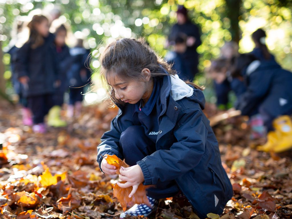 Into the woods… Outdoor Learning at Abbot's Hill