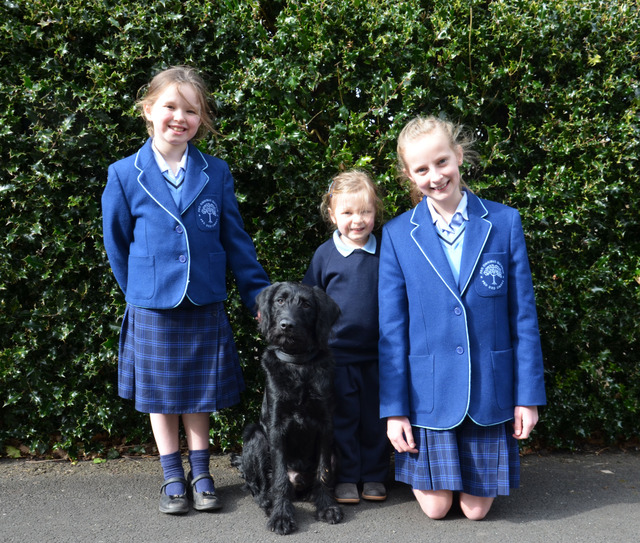 Badminton Junior School Welcome New School Dog, Monty, to their Community!