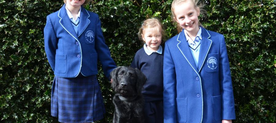 Badminton Junior School Welcome New School Dog, Monty, to their Community! (1)