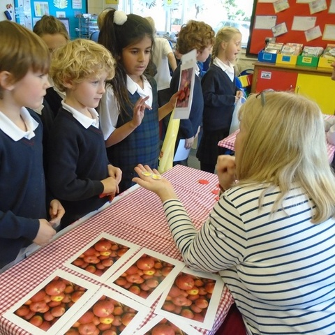 Year 2 Negotiating with Mme Greenwood