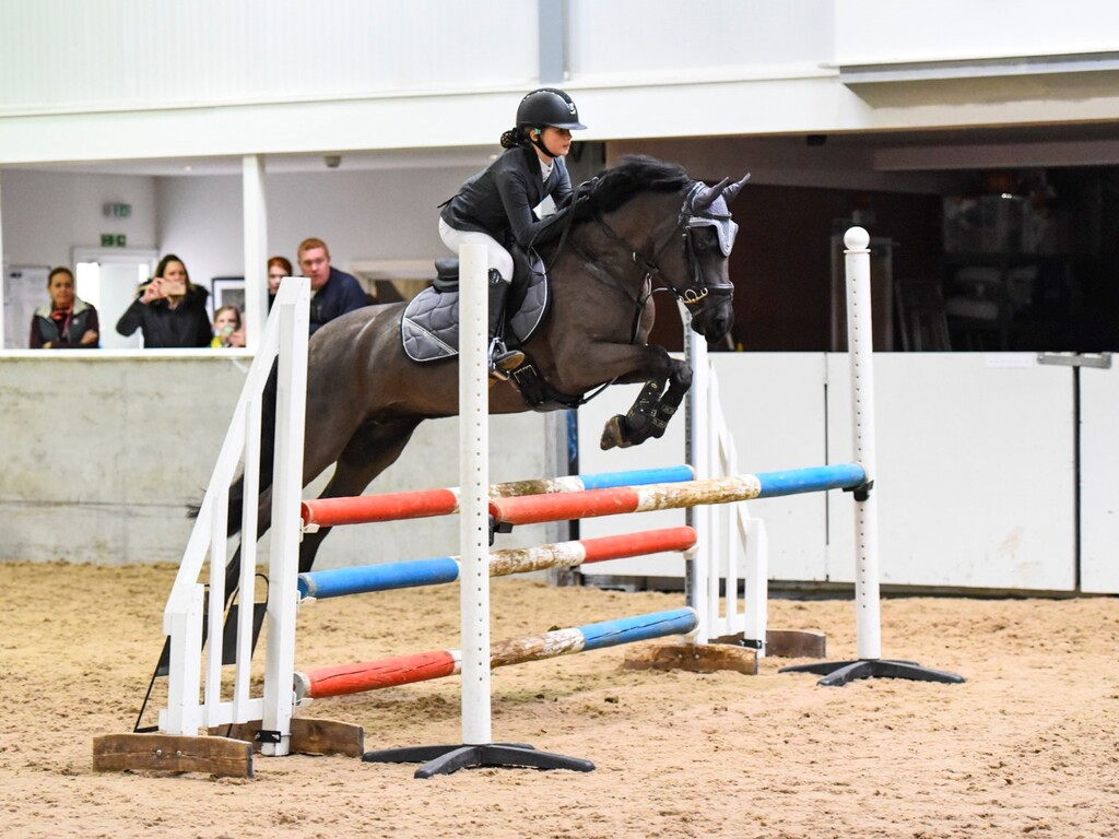 Tilly Showjumping