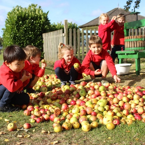 Nursery apple pressing crop - Copy