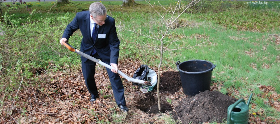 BSA Chief Executive, Robin Fletcher, planiting a 10ft oak sapling at Glenalmond College as part of the nationwide 'Boarding Orchard' programme