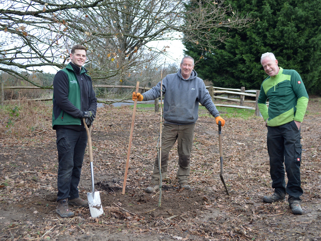 Jasper Marks (Highfield and Brookham Grounds Team), Steven Marston (Marston Forestry) and Johnny Stock (Highfield and Brookham Grounds Team)