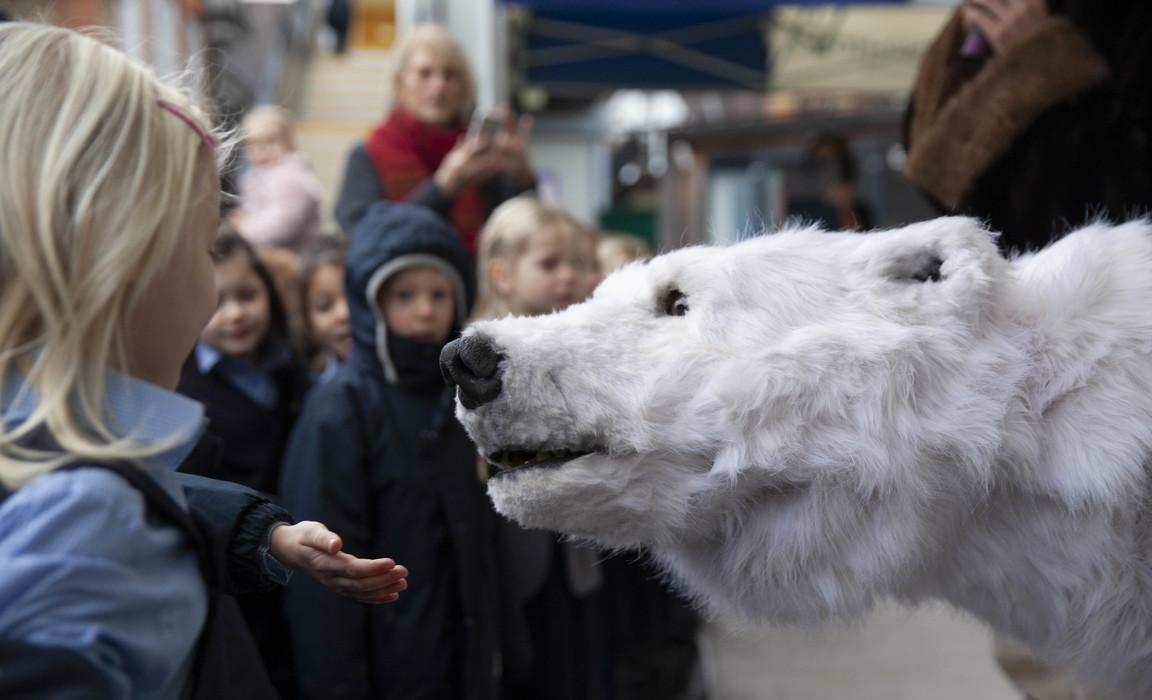 Hornsby House School Bjorn the Polar Bear low res