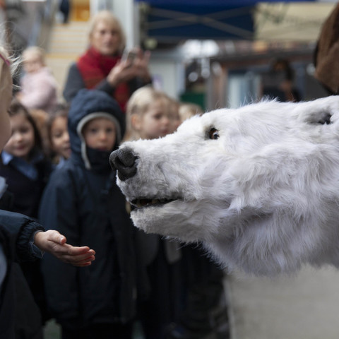 Hornsby House School Bjorn the Polar Bear low res