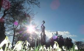 the Open Garden Scheme at Kilgraston School 23.2.20 (3)