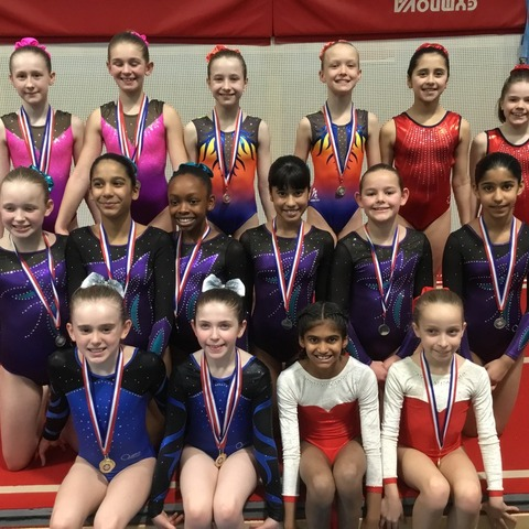 Maltman's Green at BSGA (British Schools Gymnastics Association) Southern Region Acrobatic Schools Competition