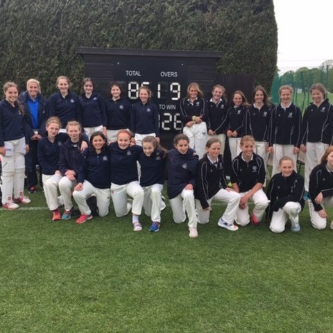 Girls cricket 2