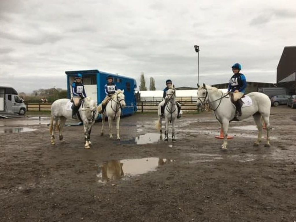 Equestrian Team secure place at National Championships with win at NSEA Event