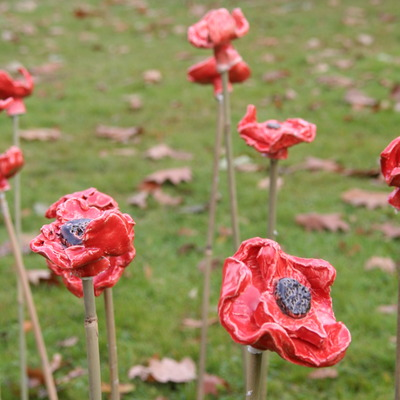 PIC_OAK_Ceramic poppies