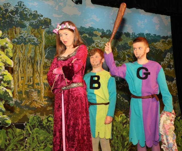 Packwood Robin Hood 4871