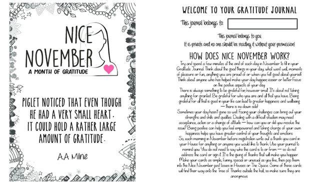 Nice November Journal