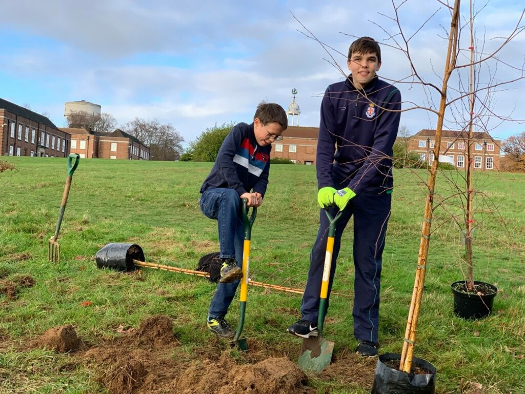 RHS is planting a tree for every new pupil that joins
