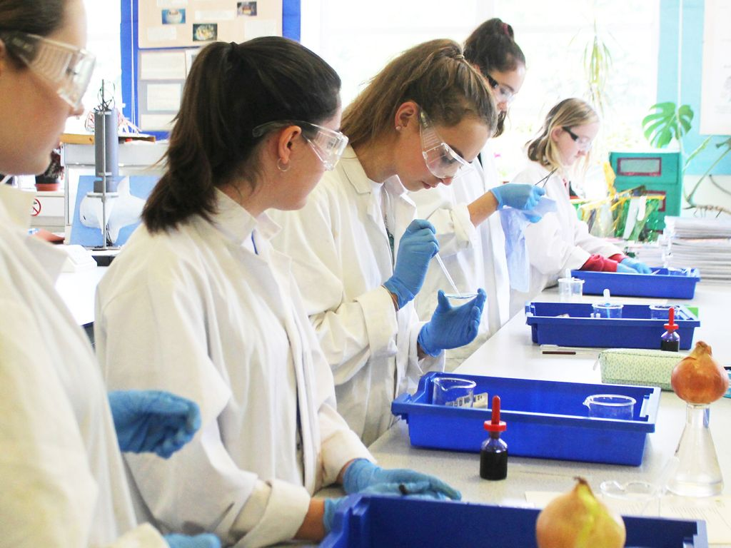 THS A Level biologists undertake research in the lab