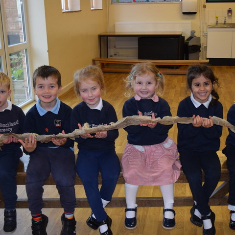 West Buckland Nursery children with the shed skin of a 12ft Reticulated Python